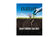 graphic of Nature magazine cover showing a gardener pulling a dandelion attached to a brain-shaped set of roots beneath the soil.